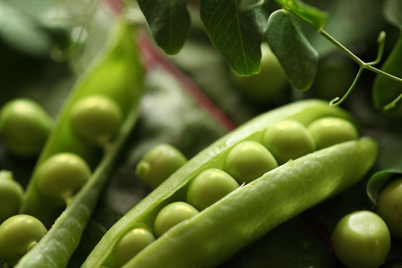 Φρούτα και λαχανικά του μήνα: Μάρτιος